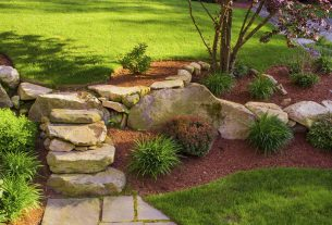 4 Elements of Lawn Design