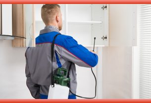 Know About The Brilliant Commercial Pest Control Services