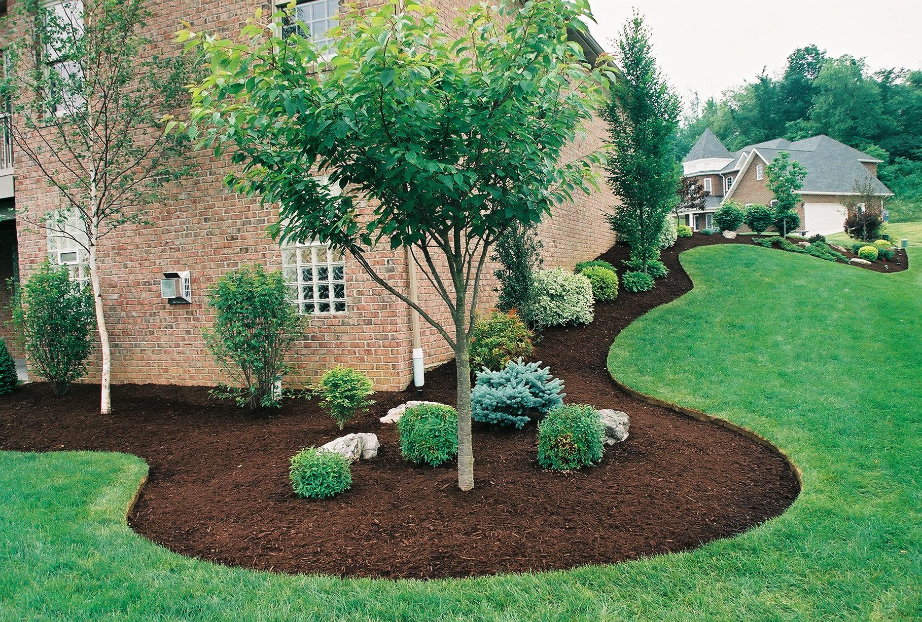 The Many Benefits of Traverse City Tree Service